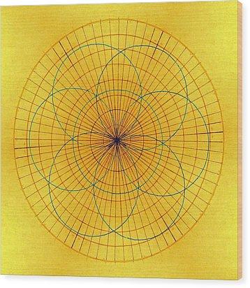 Spinning Around Wood Print by Tom Druin