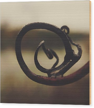 Wood Print featuring the photograph Spiral Inside by Nikki McInnes