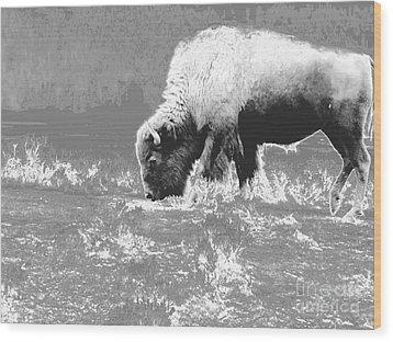 Spirit Bison Wood Print by Ann Johndro-Collins