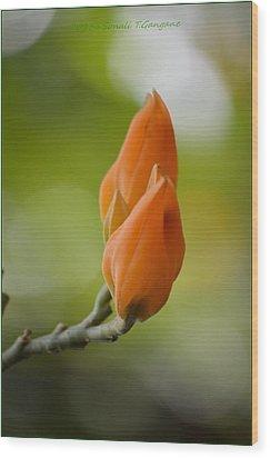 Spirit Of Spring Wood Print by Sonali Gangane