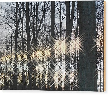 Spirits In The Woods Wood Print by Sharon Costa