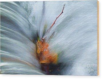Splash O Color Wood Print
