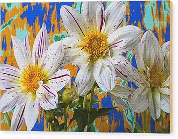 Splash Of Color Wood Print by Garry Gay