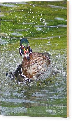 Wood Print featuring the photograph Splashdown - Wood Duck by Adam Olsen