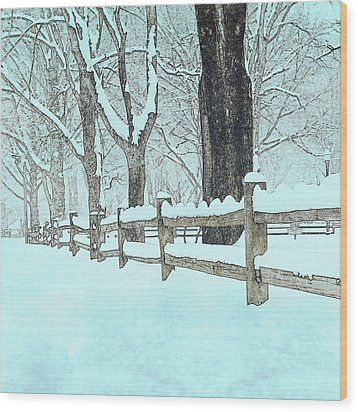 Split Rail Blues Wood Print by John Stephens