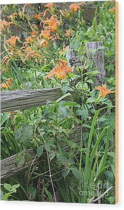 Wood Print featuring the photograph Split Rail Fence by Laurinda Bowling