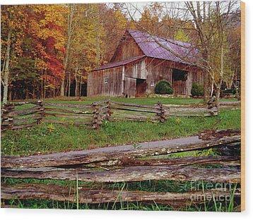Split Rail Watchdog Wood Print
