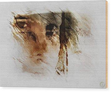 Split Vision Wood Print by Gun Legler
