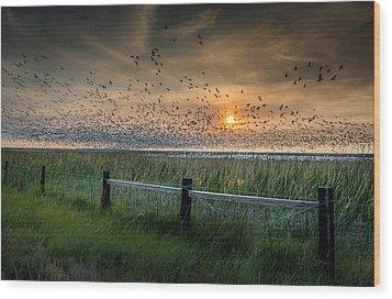 Spooked Geese Wood Print by Allen Biedrzycki