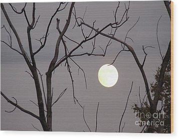 Spooky Moon Wood Print by Deborah Smolinske