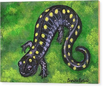 Wood Print featuring the painting Spotted Salamander by Sandra Estes