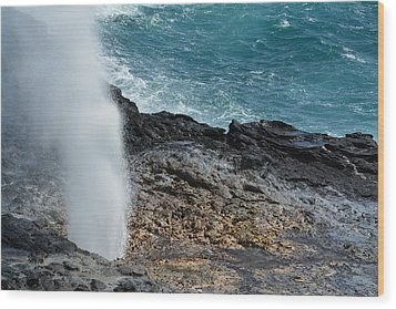Spouting Horn Wood Print by P S