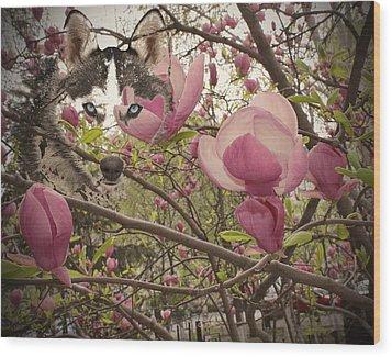 Spring And Beauty Wood Print by Georgeta Blanaru