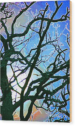 Spring Approaches Wood Print by First Star Art