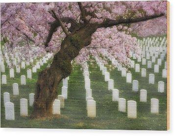 Spring Arives At Arlington National Cemetery Wood Print by Susan Candelario