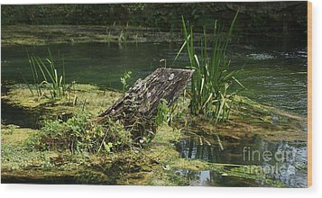 Wood Print featuring the photograph Spring At Hodgson Mill by Julie Clements