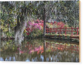 Spring At Magnolia Plantation 1 Wood Print