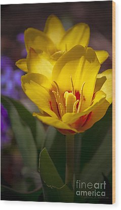 Spring Bloom In Yellow Wood Print by Julie Palencia