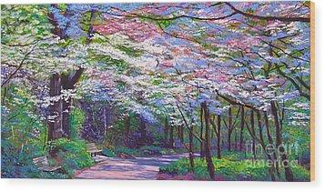 Spring Blossom Pathway Wood Print by David Lloyd Glover
