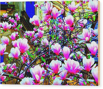 Spring Blossoms Wood Print by Ed Weidman