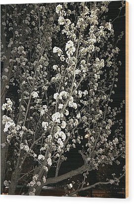 Spring Blossoms Glowing Wood Print
