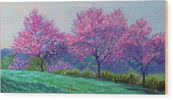 Spring Blossoms On Mill Mountain Wood Print