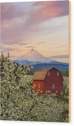 Spring Blossoms Sunrise Wood Print