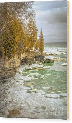 Wood Print featuring the photograph Spring Breaking Through At Cave Point by Mark David Zahn