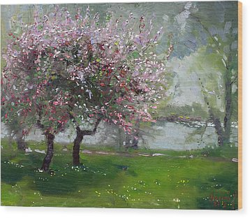 Spring By The River Wood Print by Ylli Haruni