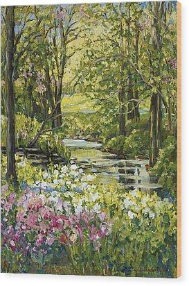 Spring Creek Rockford Il Wood Print by Alexandra Maria Ethlyn Cheshire
