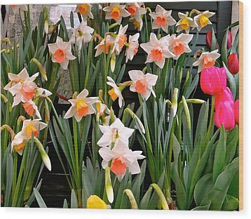 Wood Print featuring the photograph Spring Daffodils by Ira Shander