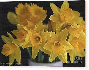 Spring Daffodils Wood Print by Tracy  Hall