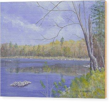 Spring Day Wood Print by Nan McCarthy