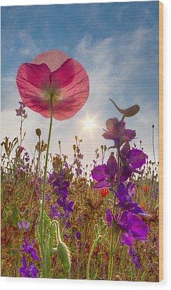 Spring   Wood Print by Debra and Dave Vanderlaan