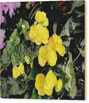 Wood Print featuring the photograph Spring Delight In Yellow by Luther Fine Art