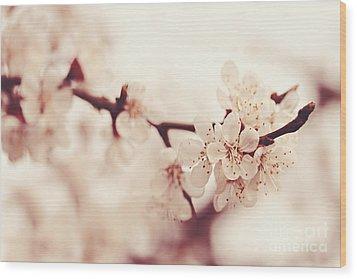 Spring Wood Print by Diana Kraleva