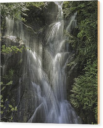 Spring Falls Wood Print by Gary Neiss
