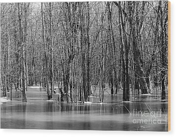 Spring Flooding Wood Print by Sophie Vigneault