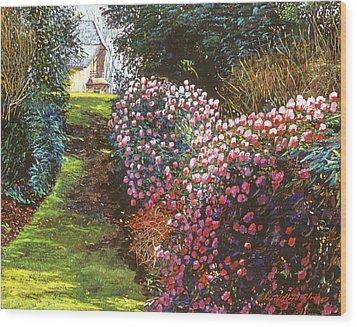 Spring Flower Fantasy Wood Print by David Lloyd Glover