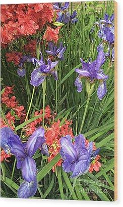 Spring Flowers 1 Wood Print