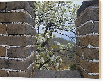Spring Flowers At The Great Wall Wood Print by Larry Moloney