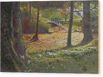 Spring Glow At  Kailzie Gardens Peebles Wood Print