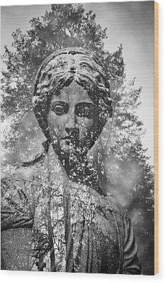 Spring Grove 14 Wood Print by Scott Meyer