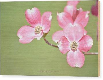 Spring Harbinger Wood Print by Sonali Gangane