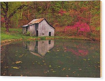 Spring Has Come To The Appalachia Wood Print by Bijan Pirnia