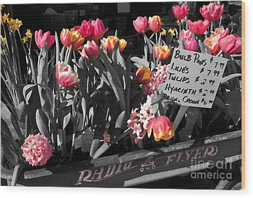 Spring In A Wagon Wood Print by Sandi Mikuse