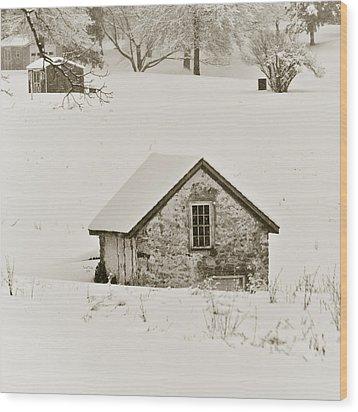 Spring In Boyertown Wood Print by Trish Tritz