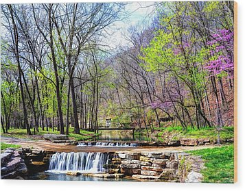 Spring In Dogwood Canyon Wood Print by Jean Hutchison
