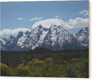 Spring In Grand Tetons National Park Wood Print