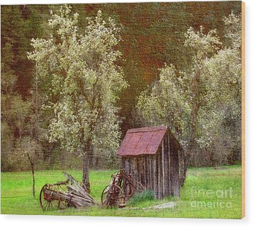 Wood Print featuring the mixed media Spring In Old Ranch by Irina Hays